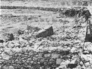 Паг - Острво умирања