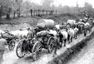 Срби, народ који је жртвован